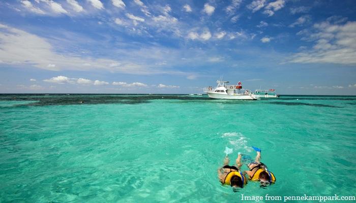 Miami Beach Snorkeling Tours